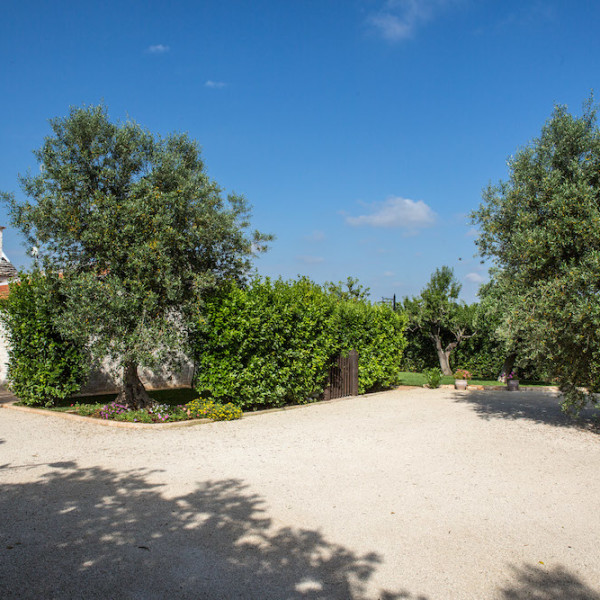 Trulli Oasi Fiorita: il giardino e l'uliveto